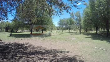 Campo en Venta#EROR_FALTA_LOCATION_FULL_TEXT